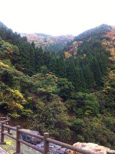 滋賀県にある処女湖